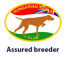Hungarian Vizsla Club Assured Breeders